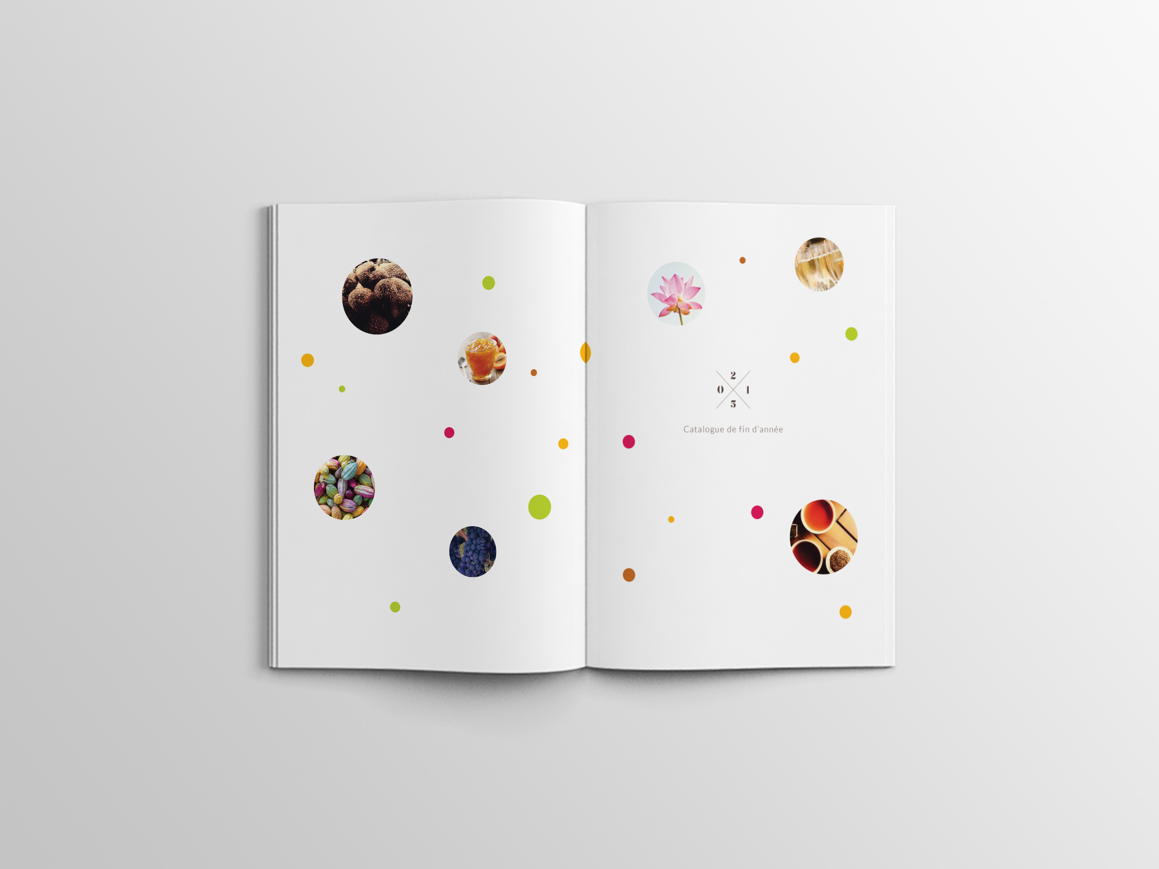 Rabot-Catalogue-Brochure-02